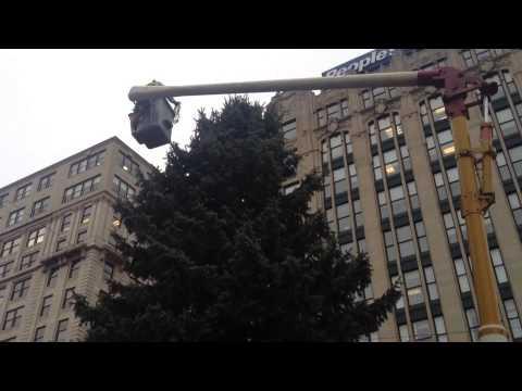 Hanging The Lights On Portland's Christmas Tree