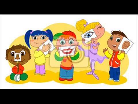 Los 5 sentidos youtube for Plafones de pared infantiles