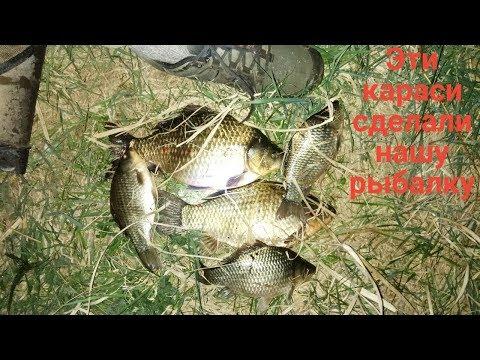 Ловля карася. Рыбалка ночью. Эти карасики просто порадовали меня...