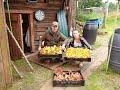 Сдаём грибы за деньги! Грибы в Вологодской обл., часть 7