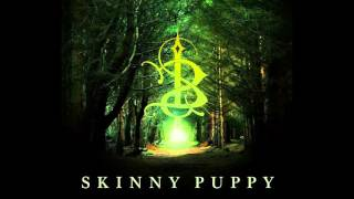 Watch Skinny Puppy Optimissed video
