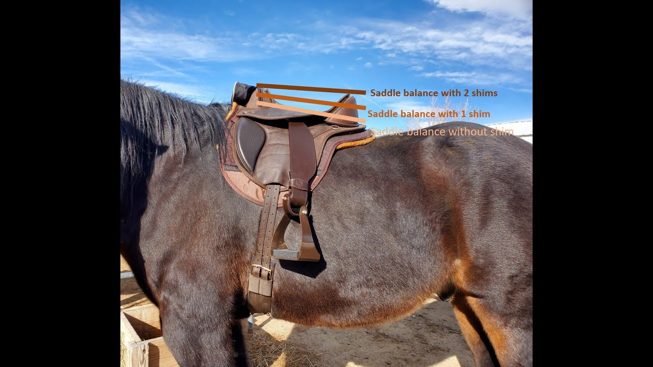 Initial Saddle Fitting Case Studies: Part One