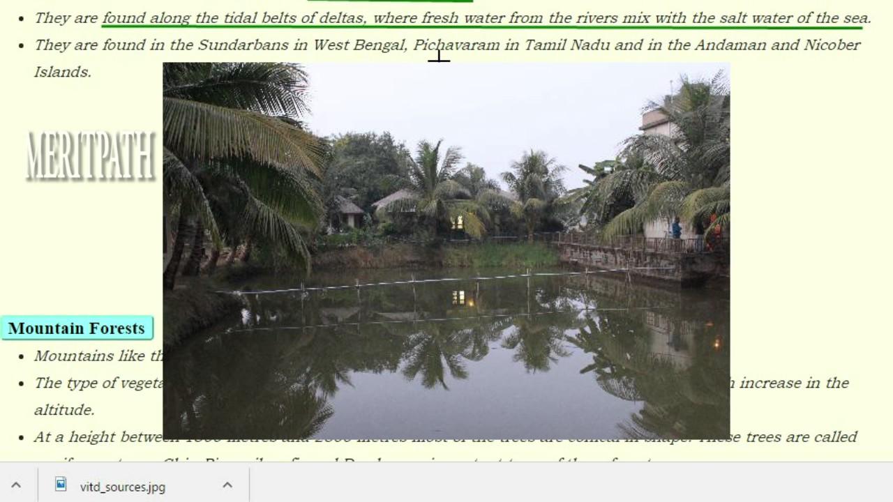 6 Class VI SOCIAL CBSE INDIAN NATURAL VEGETATION AND WILDLIFE