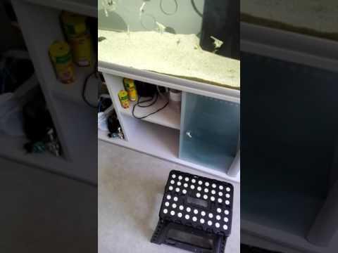 Biobox, comment évité de changer les boites .