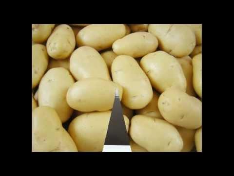 30kg potato chips machines/Small potato chips vending business
