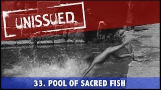 Unissued Nº33 - Pool Of Sacred Fish (1946)