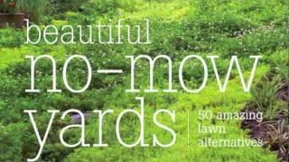 Trailer-BEAUTIFUL NO-MOW YARDS