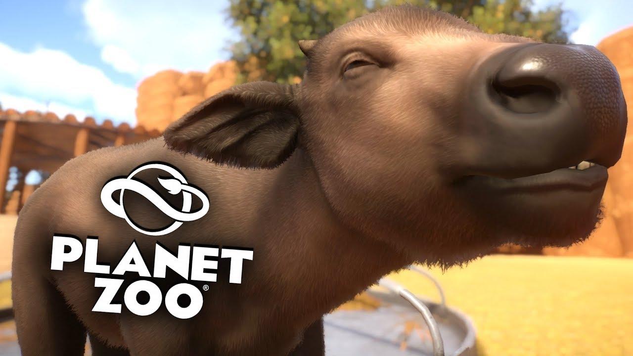 PLANET ZOO Beta - 22 -  | Nachwuchs in Safari ► Franchise Mode