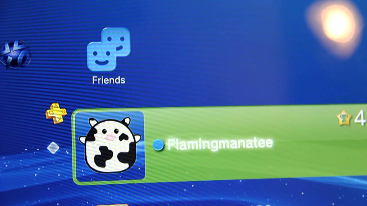 My PSN ID (PS3 Gamer Tag)