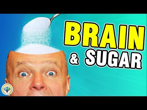 Keto Diet Epilepsy (Brain And Sugar)