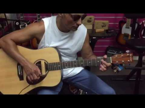 AD-33 soundhole magnetic pick up