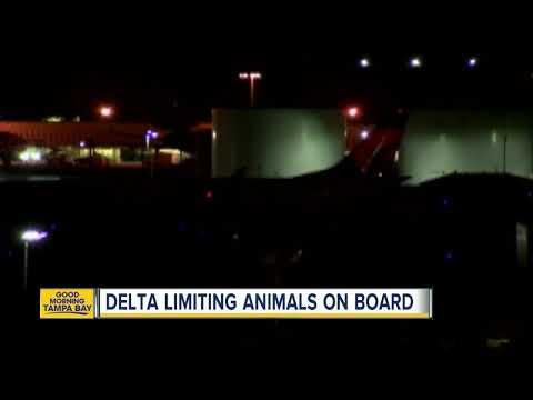 Aviation Blog - Jay Ratliff - Delta: No Emotional Support Animals on Extended Flights