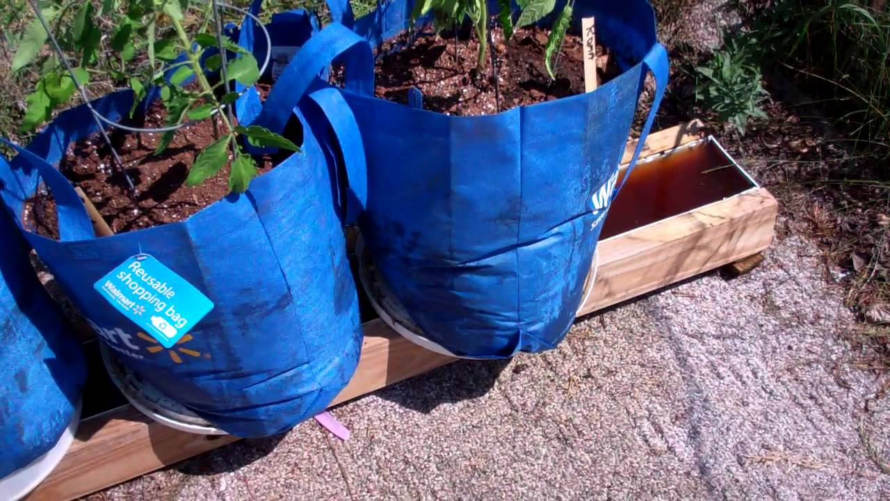 The Self Watering Rain Gutter Grow System Using Grow Bags