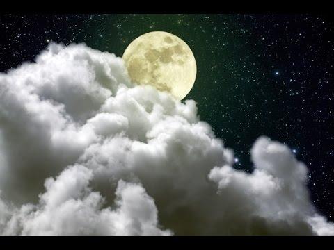 Relaxing Sleep Music, Calm Music, Soft Music, Instrumental Music, Sleep Meditation, 8 Hours, ☯986