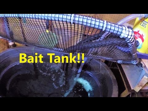 Why You SHOULD Have A Bait Tank And How I Made Mine!