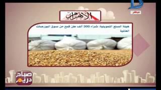 صباح دريم هيئة السلع التموينية تستورد 300 ألف طن قمح