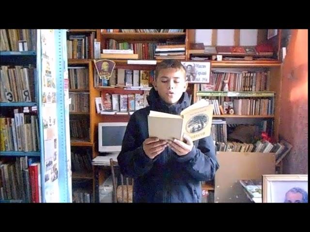 Изображение предпросмотра прочтения – АнтонинаАверина читает произведение «Ася» И.С.Тургенева