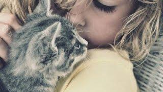 *My animals*как появилась моя кошка Люся