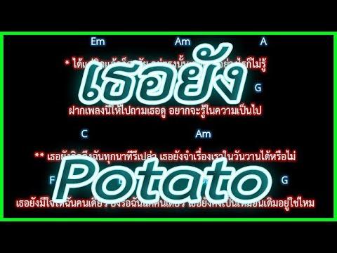 🎸คอร์ดเพลง🎸เธอยัง  Potato