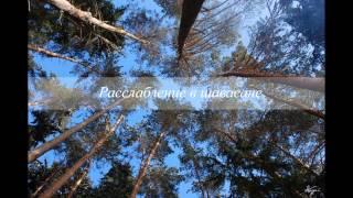 Направляемое расслабление в шавасане (18 мин)  (йога нидра)