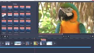 Как сделать видео самому? | Movavi Video