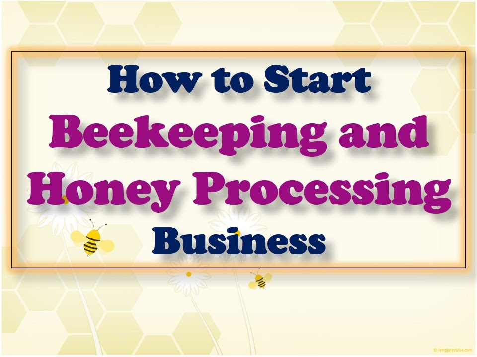 honey business in usa