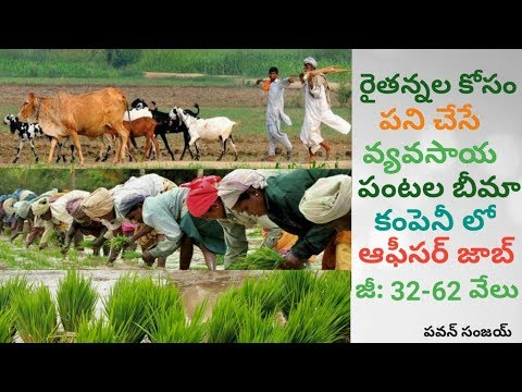 Agricultural Officer Jobs with Excellent Salary | in Telugu By Pa1