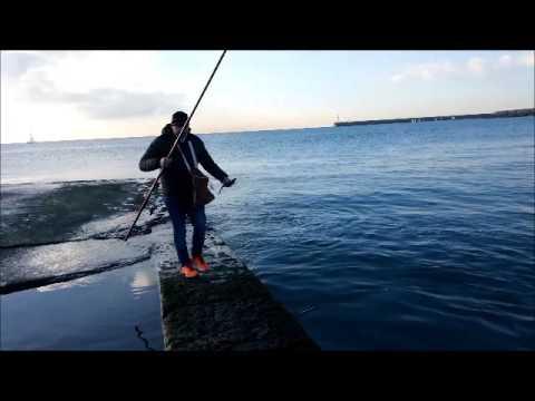 Pescando a Bolognese in Foce