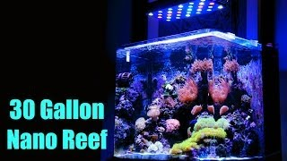 30 Gallon Nano Reef - Brilliant Aquarium! Hd