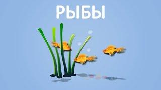 Рыбы. Энциклопедия для детей