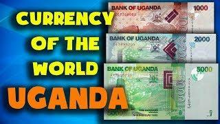 Currency of the world - Uganda. Ugandan shilling. Exchange rates Uganda. Ugandan banknotes and coins