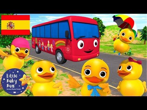 Canciones Infantiles   ¡Cinco patitos en un Autobús!   Dibujos Animados   Little Baby Bum en Español