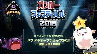 「ガンホーフェスティバル2018」ステージ④
