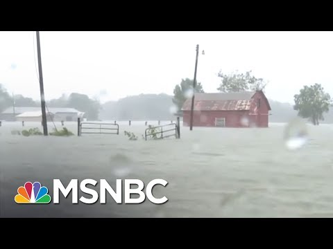 Explosion Expected From Hurricane Harvey Damaging Arkema Chemical Plant | Rachel Maddow | MSNBC