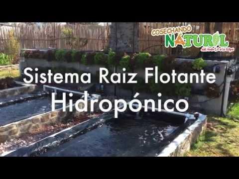 Instalación Bancal Hidropónico para Raiz Flotante