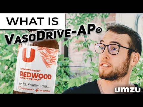 What Is VasoDrive-AP?