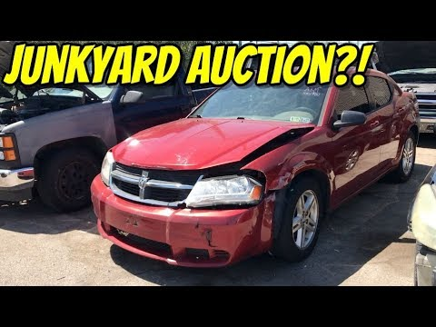 are-these-junk-cars-or-auction-cars?!