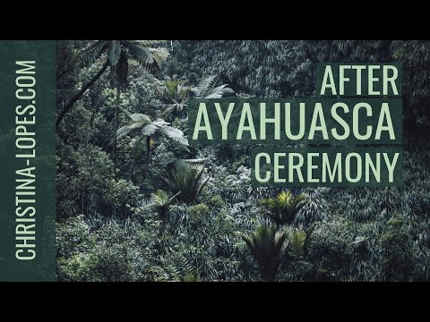 Ayahuasca Part 3: After The Ceremony
