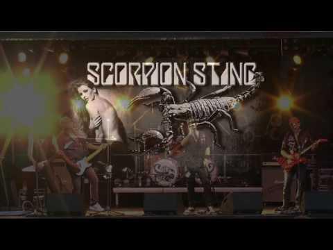 Scorpion Sting - The Scorpions Tribute