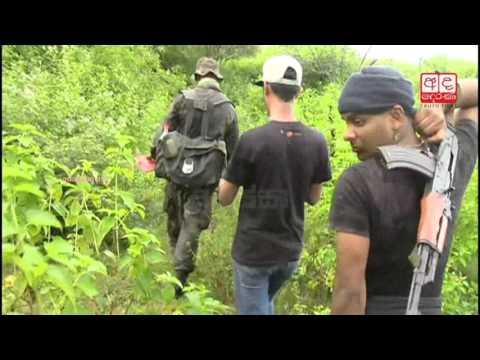 Police raid ganja plantations in Udawalawe