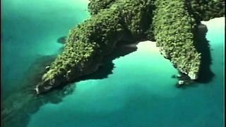 33 1991 Палаван   Последнее убежище - Подводная одиссея команды Кусто
