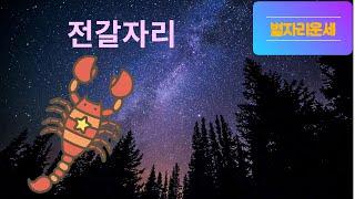 별자리운세 전갈자리/12성좌운/점성술/총운/전갈자리운세