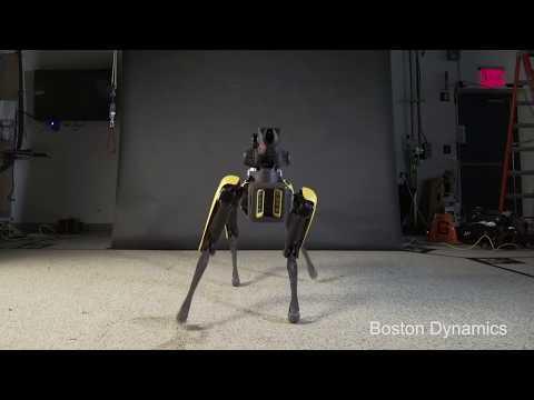 Dans eden robot köpek