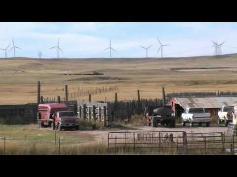 Wind Energy: Clean, Affordable, Renewable