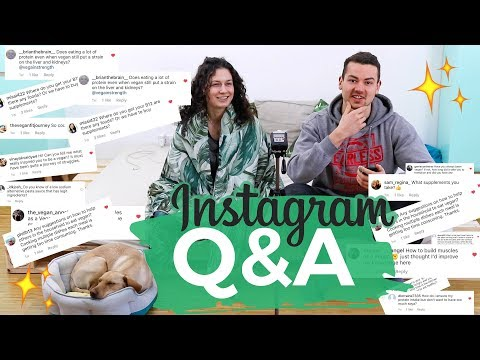 Vegan Couple Q&A | Vegan dog?