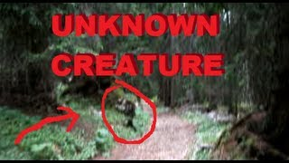 WTF UNKNOWN CREATURE CAUGHT ON TAPE - INCREDIBLE RARE FIND