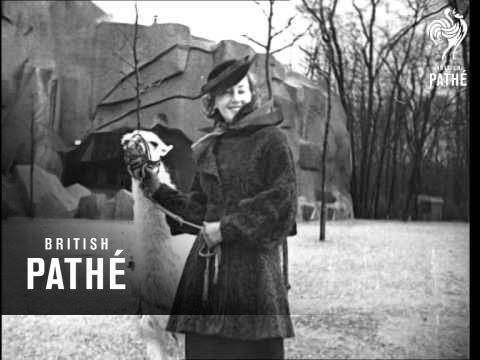 14e49e6dbd1 The Mood And The Mode (1937) - YouTube