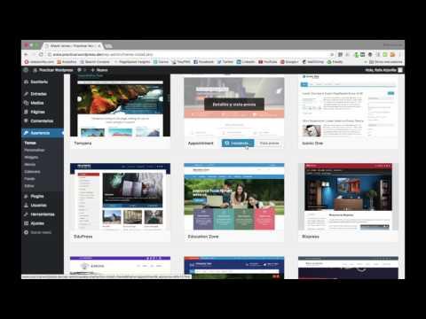Apariencia de WordPress y cómo cambiar de tema - vídeo