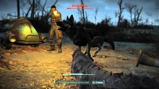 Fallout 4. Тупая псина