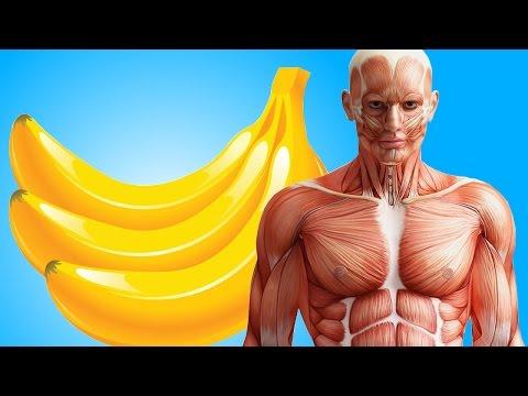 Полезные свойства сельдерея для похудения и здоровья. Виды